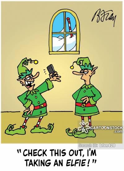 an elfie