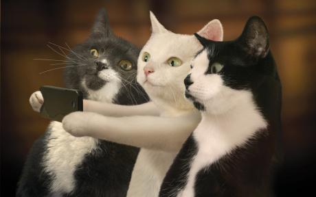 threeple selfie