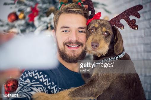 Christmas dog selfie