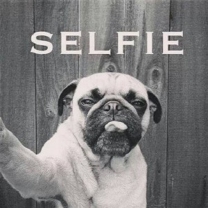 Selfie quotes and funny captions