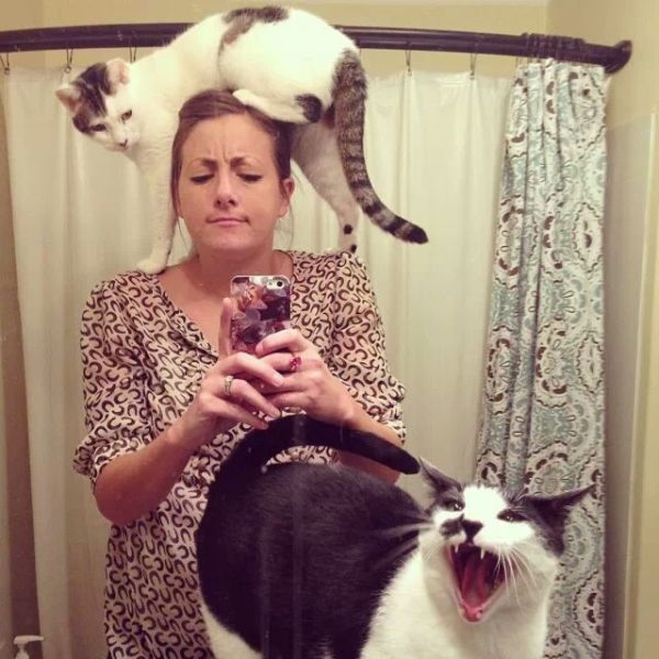 cat screaming while taking a selfie