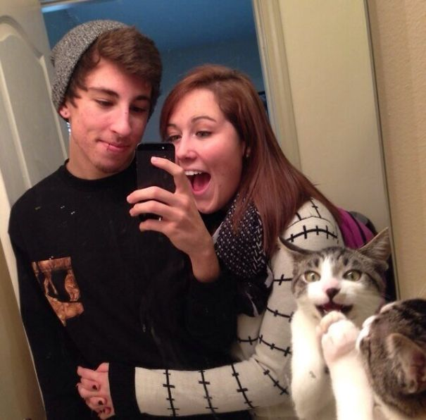everyone is excited about making a mirror selfie, esp. the cat