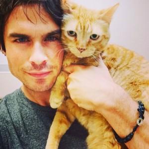 selfie Ian Joseph Somerhalder with a cat