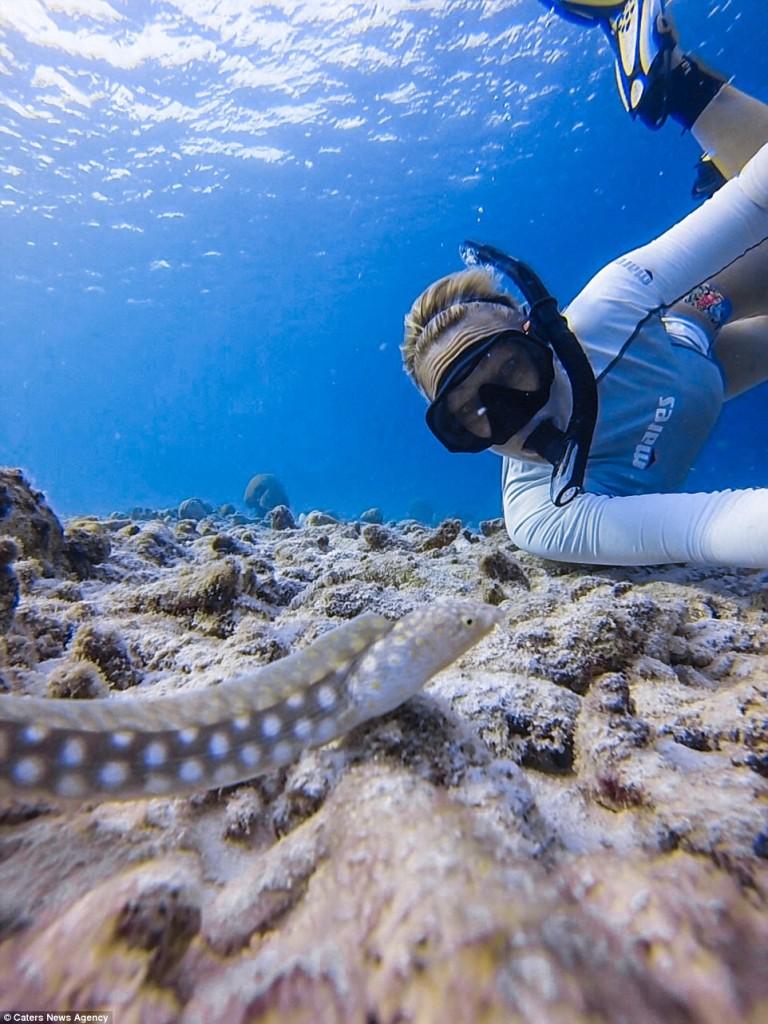 Underwater selfie: secret rules to astonishment