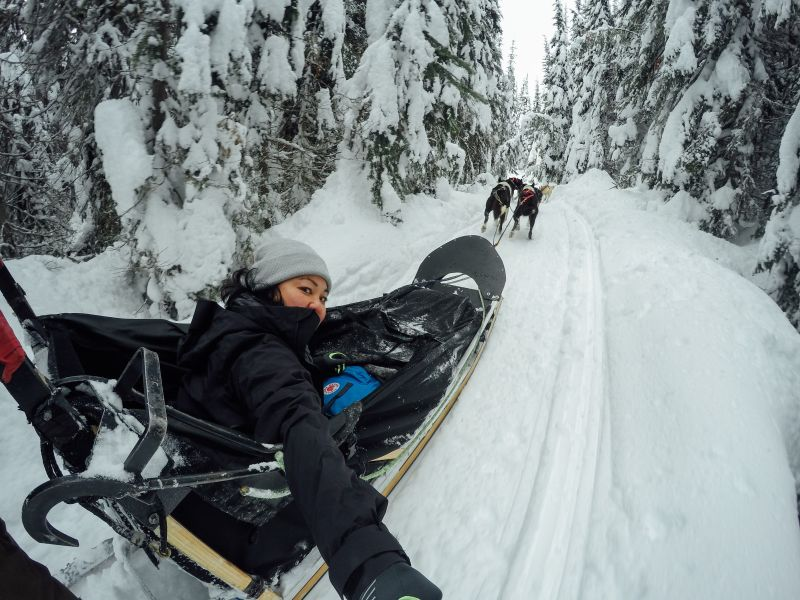 Dog sledding in Ontario selfie